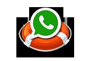 Как восстановить удаленные тексты, фотографии, видео WhatsApp