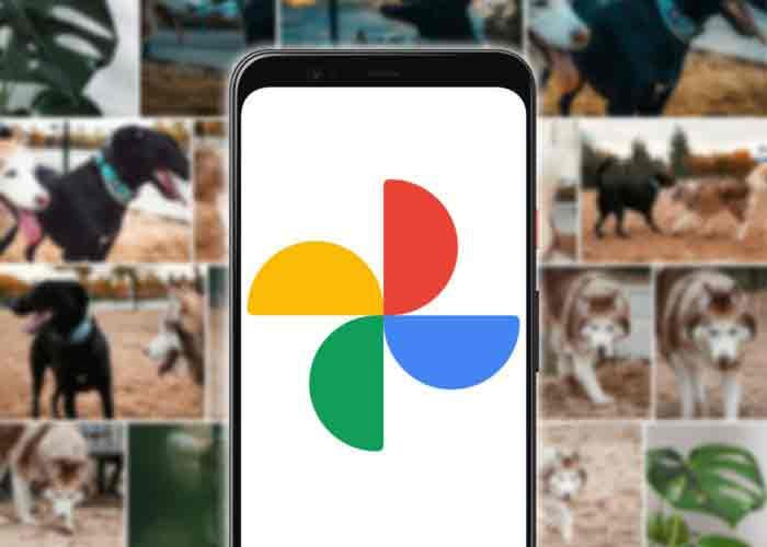 Как шаг за шагом скачать все свои фотографии из Google Фото
