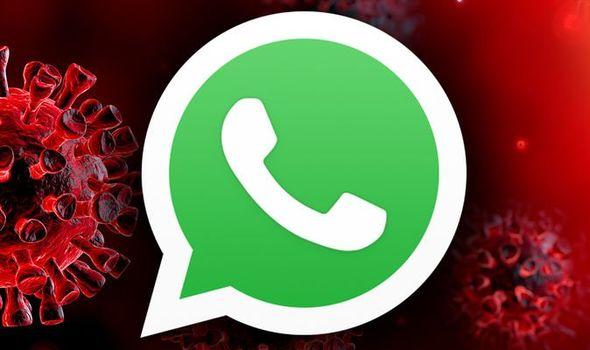 Коронавирус |  Во время пандемии глобальное использование WhatsApp достигло 51%